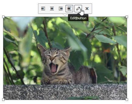 挿入した画像を編集する「Edit|button」ボタン